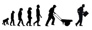 evolucion hombre