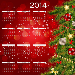 novedades fiscales 2014